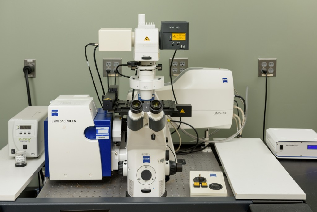 Confocal Microscopy Bioimaging Center